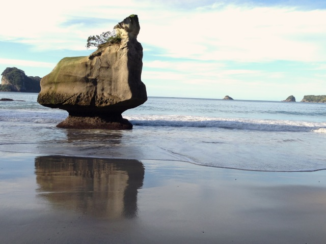 cathedral cove reflections