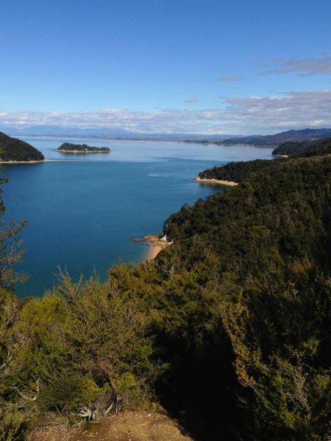 hiking and sailing in abel tasman national park