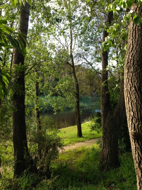 klein river walk