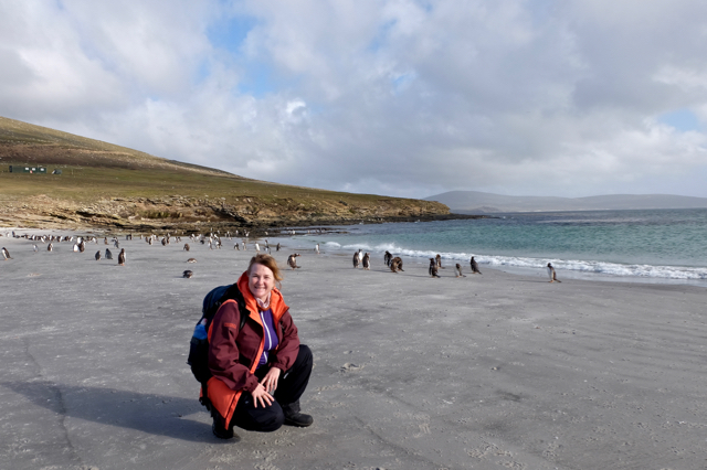 just chilling on the beach with a couple of gentoo penguins