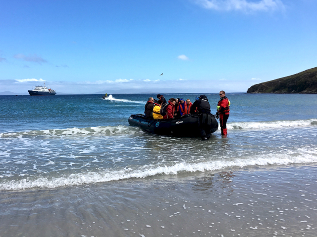 first wet zodiac landing at Saunders Island in the The Falklands