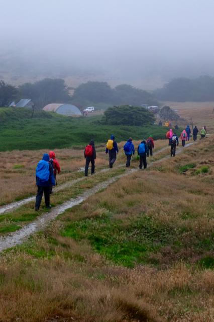 rainy day hike on Carcass Island