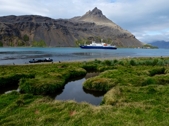Plancius and the view across the bay at Grytviken