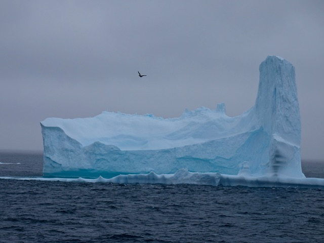 first icebergs on the way to the South Orkney Islands