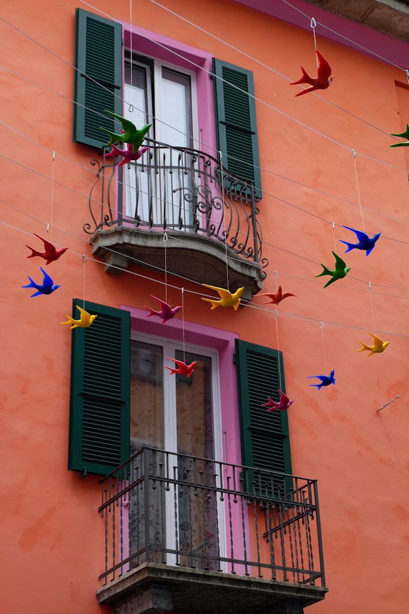 cracking art flying birds
