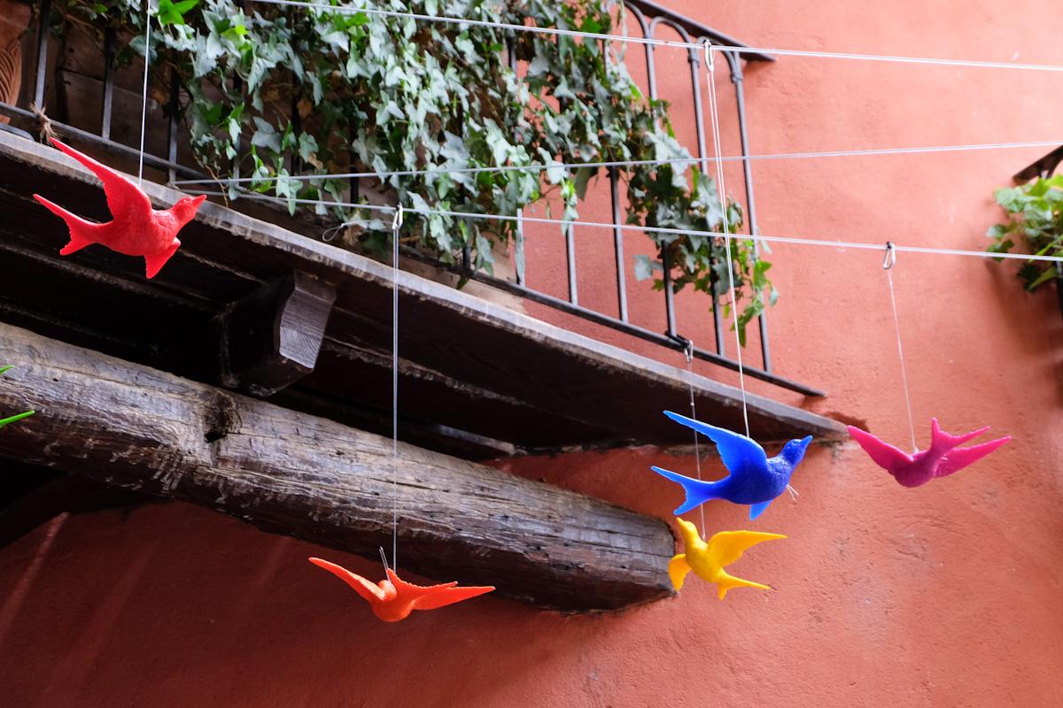 cracking art flying high birds